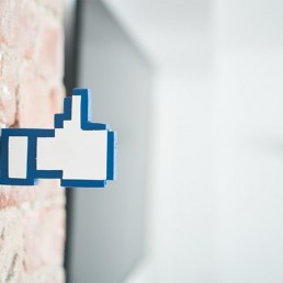 Facebook Like aus holz